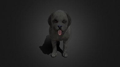 fdji-006 standing dog - buy royalty free 3d model ipoypunk ipoypunk 1be1a28 rigged animated female dog 3d model standing place cycle additional textures pbr render included - fdji-006 standing dog - buy royalty free 3d model ipoypunk ipoypunk 1be1a28