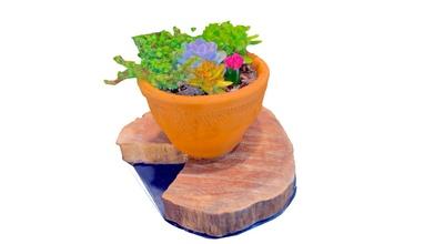 flower pot tree stump - download free 3d model wayne lambo wayne lambo 8f650da flower pot tree stump - download free 3d model wayne lambo wayne lambo 8f650da