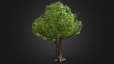 game ready oak tree model - download free 3d model alexander blom exiistin 8ba0e67 game ready oak tree model - game ready oak tree model - download free 3d model alexander blom exiistin 8ba0e67