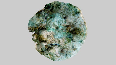 guerrero copper sheet bedrock no1 2019 - download free 3d model mel fisher maritime museum mfmaritimemuseum 1efe25f site 2-04-8mo02343 piece copper sheet found fused sea bottom site shipwreck believed havana-based pirate slave ship guerrero sunk near key largo 1827 piece likely remnant copper sheathing used protect lower part ship shipworms fouling copper-alloy tack sits piece evidence type fastener used attach copper ship s hull same feature rendered earlier images taken 2012 see https skfbly 6pwsy but newer render much clearer model created june 2019 scale 5 centimeters - guerrero copper sheet bedrock no1 2019 - download free 3d model mel fisher maritime museum mfmaritimemuseum 1efe25f