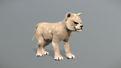 lion cub animation lowpoly animal simba - buy royalty free 3d model haykel-shaba haykel1993 58a23bd lion cub animation lowpoly animal simba - buy royalty free 3d model haykel-shaba haykel1993 58a23bd