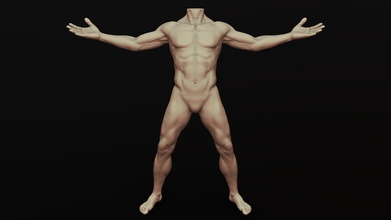 male body sculpt pose 11 - buy royalty free 3d model zstuff rumpelshtiltshin 48865cf male body sculpt pose 11 - buy royalty free 3d model zstuff rumpelshtiltshin 48865cf