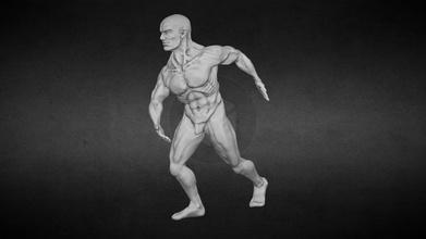 male body study - download free 3d model netrunner pl netrunner pl 4d96814 male body study - download free 3d model netrunner pl netrunner pl 4d96814