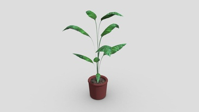 potted plant - download free 3d model gon alo miranda goncmira02 1a68fc8 potted plant - download free 3d model gon alo miranda goncmira02 1a68fc8
