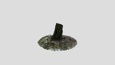 tree stump - download free 3d model mike crouse mike crouse fceb4aa tree stump - download free 3d model mike crouse mike crouse fceb4aa