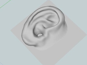 human ear people oreja