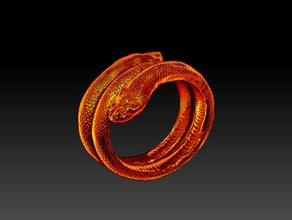 2 yılan bilezik yöneldi bilezik bilezik çift başlı yılan fantezi takı nick nickiacobbocom nick iacobbo çıngırak çıngıraklı yılan cilt yılan yılan kafa yılan derisi doku