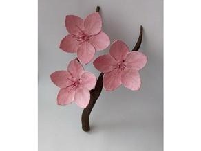cherry blossom branch decor blossom cherry cherry blossom decoration flower tree