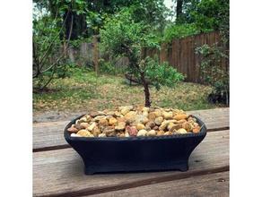 bonsai pot outdoor & garden bonsai bonsai plant bonsai planter bonsai pot bonsai tree terrarium