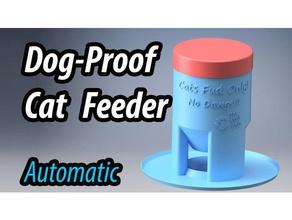 dog-proof cat feeder pets bowl cat cat feeder cat food cat food dispenser dog dogs dog bowl dog dish dog food feed pets pet feeder pet food pet food dish pet food dispenser