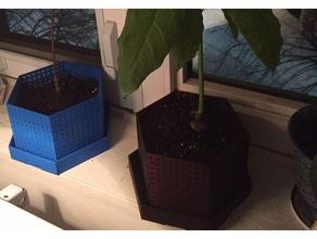 air pruning pot bonsai - variation outdoor & garden bonsai bonsai planter bonsai pot bonsai tree pruning