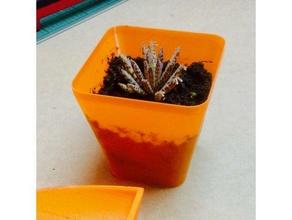 small plant pot outdoor & garden flower pot indoor garden indoor gardening indoor planter indoor plant pot plant planter plant pot seed seedlings