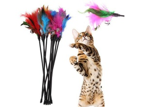 cat toy - play stick unbreakable version pets cat cat feather cat play stick cat stick cat toy cat toys cat toy holder cat toy mount play stick