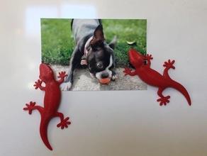 gecko fridge magnet kitchen & dining fridge-magnet fridge magnet fridge magnets magnet