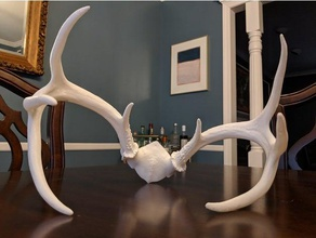 whitetail deer skull 8 point remix easy multipart print animals nsfw