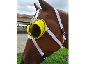 fuznuz sungoggles pets equine eyewear fuznuz goggles horse sunglasses