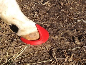 fuznuz epoxy+silicone hoof boot work progress pets boot fuznuz hoof horse horseshoe horse riding riding
