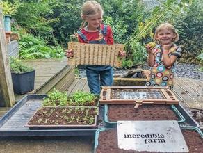déposer semoir rapide de semis le semis lasercut l'aquaponie l'agriculture la culture hydroponique lasercut le semis outil de l'agriculture urbaine