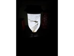 lithophane garden luminaries dragonflies garden lights lithophanes nightlights solarlights