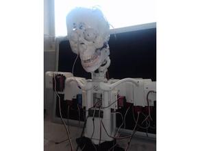 dara robot clavicles dara robot inmoov inmoov face inmoov head inmoov modifications inmoov neck robot robotics robots