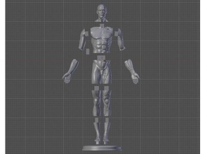 male anatomy reference 1 3 scale remix - description anatomically correct anatomy anatomy model health male anatomy male anatomy model male body male character male figure male torso medical science medicine nude male reference