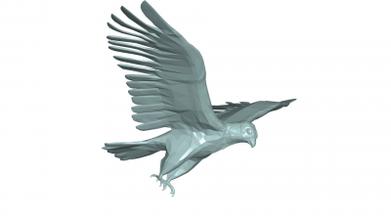 falco 3d modello 3D stampa modello 3D stampa file 3D stampabile modello 3D stampa design 3d Stampa falco 3d modello