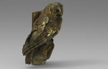 strix aluco tawny owl brown owl nature 3D printing model, 3D printing file, 3D printable model, 3D printing design, 3d print, nature, animal, bird, birds, strix, aluco, tawny, owl, brown, owl