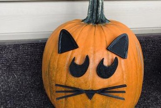 mr pumpkin head halloween cat pumpkin face kids halloween craft art halloween pumpkin jack o lantern pumpkin carving kids craft halloween craft fun pumpkin decorating cat lover cat cute